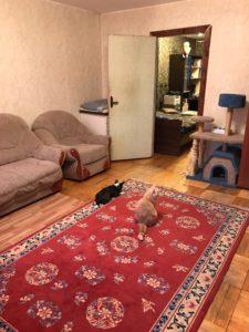 Трешка с хорошей мебелью на Большевиков